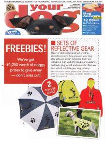 Your Dog Magazine - November Issue